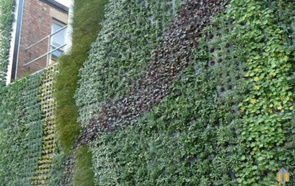 Pareti Giardini Verticali ~ Ispirazione design casa